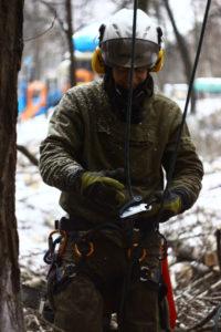 Удаление деревьев в Кубинке