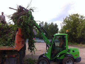 Вывоз срубленных деревьев