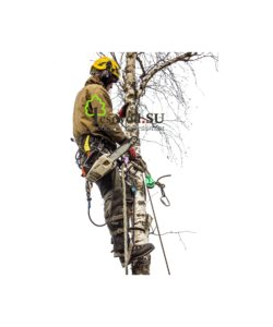 Спил деревьев в Каширском районе